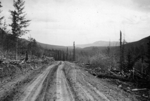 Rough graded tote road from Carcross heading toward Teslin River. 1942